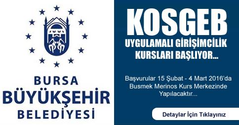 Bursa Kosgeb Girişimcilik
